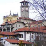 conifera centenaria a Tavigliano